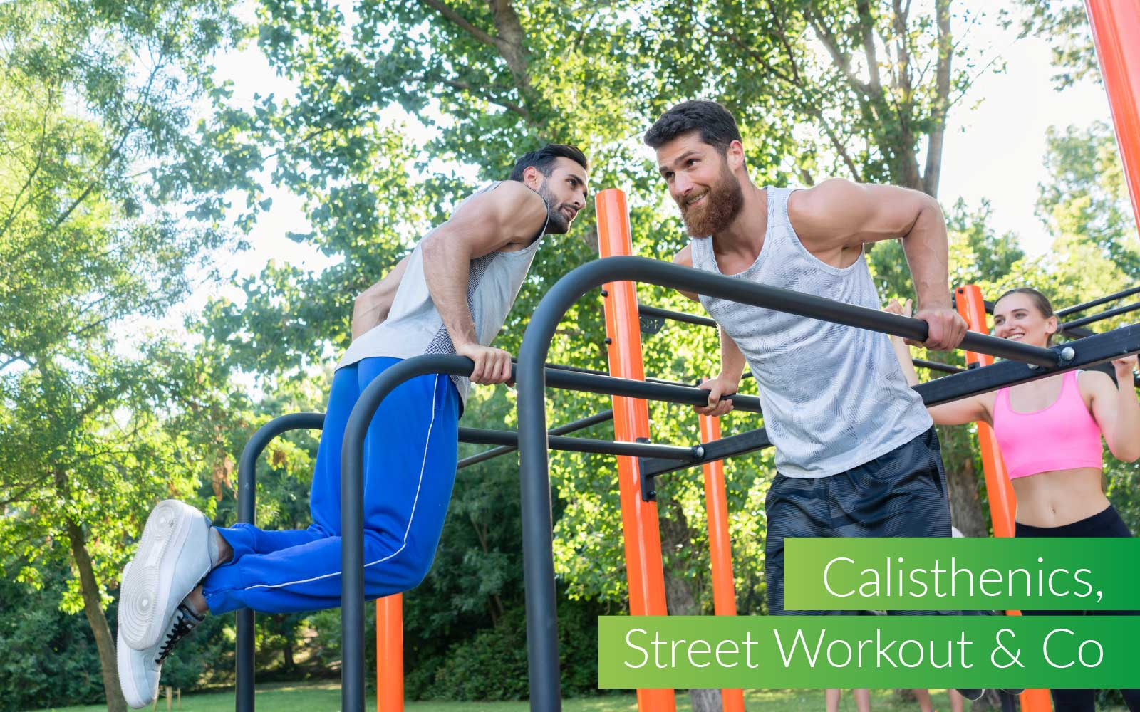 Calistehnics, street workout